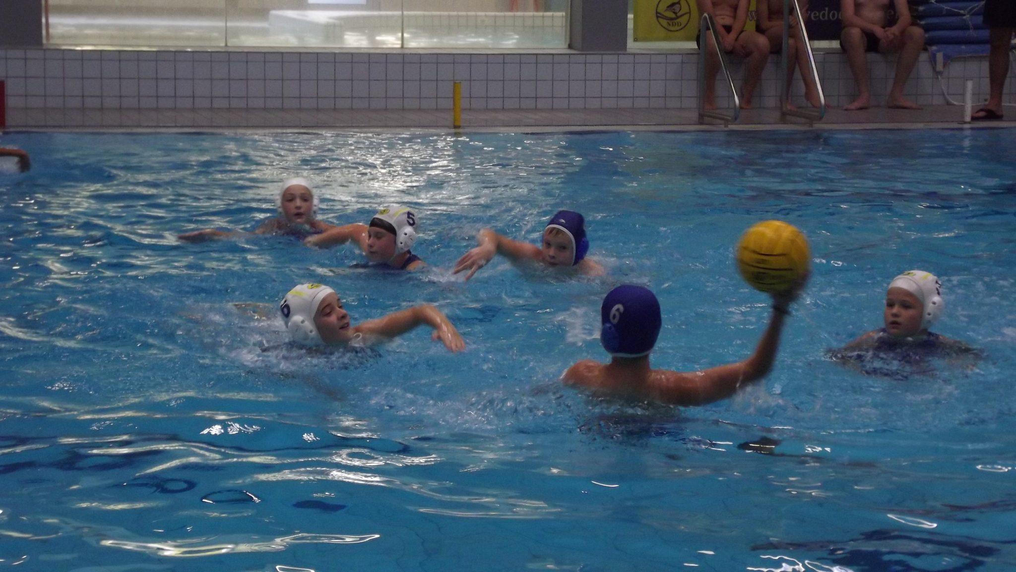 Goede start jeugdteams waterpolo